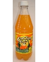CACTUS COOLER ORANGE PINEAPPLE 20OZ BOTT Thumbnail
