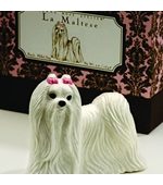 GIANNA ROSE LA MALTESE Thumbnail